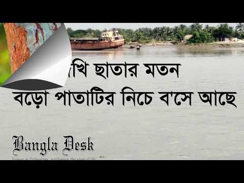 বাংলার মুখ  -জীবনানন্দ দাশ।। আবৃত্তি  -আসাদুজ্জামান নুর ।। Banglar Mukh jibanananda Das