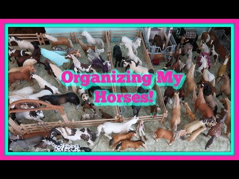 🐴Organizing ALL Of My Schleich Horses!🐴Clean Up My Schleich Barn With Me!🐎😀FIRST DAY TV