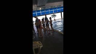 видео Разделитель для дорожек в бассейне