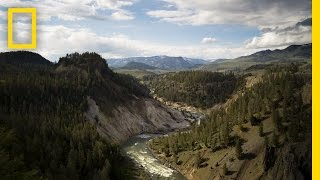 The Best of Yellowstone | America's National Parks