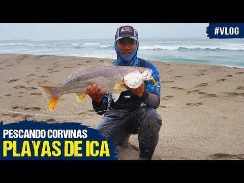 #Vlog - Pescando