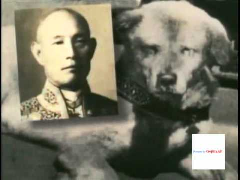 Life and Death of Hachi - Lost and very rare PHOTOS -