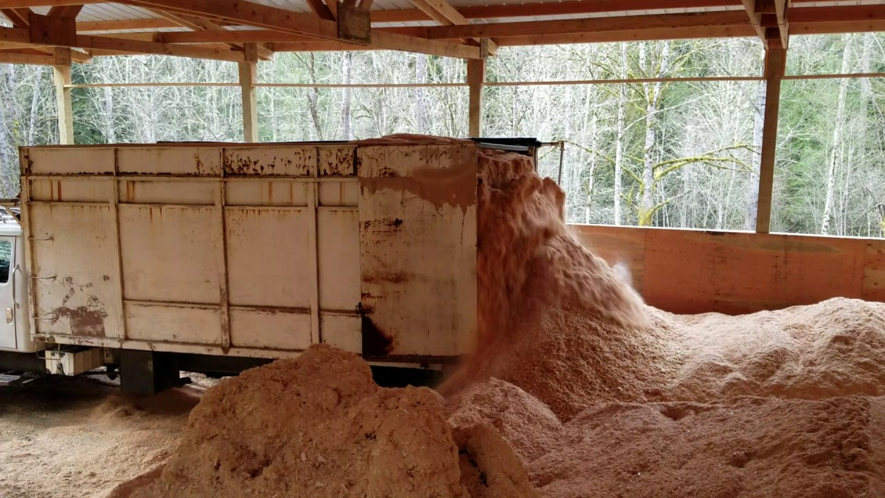 Shavings and Sawdust for Horse Stables | NW Dry Shavings