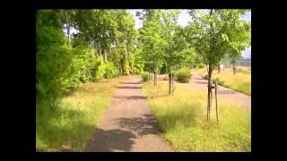 西都の散歩道-長千代丸伝承池「稚児ケ池」と「記紀の道」