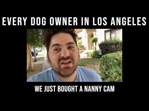 every-dog-owner-in-la