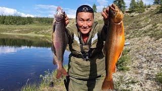 ПОЙМАЛ ЗОЛОТУЮ РЫБКУ Сбылась мечта ***** ))) рыбалка в Якутии
