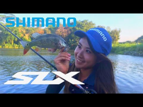 ★ Peacock Bass Fishing With SLX In S.E.A ★ - Bass Fishing