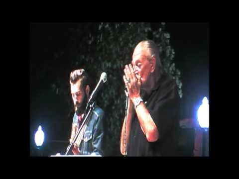 Charlie Musselwhite - My Kind of Gal mp3