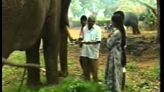 Surabhi - Episode 287 - Renuka Shahane and Siddharth Kak