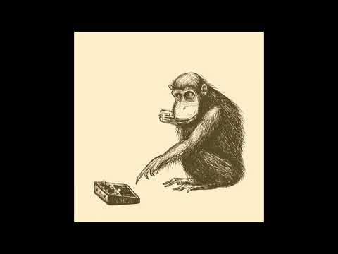Second-Hand Apes - Lukewarm