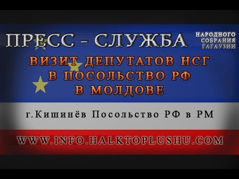 Визит депутатов НСГ в посольство РФ в Молдове
