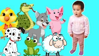 BABY AND HER FUNNY ANIMALS