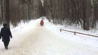 Балатово лес(, 2016-03-08T09:39:21.000Z)