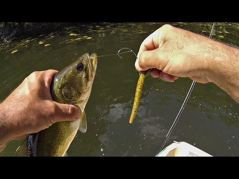 Backyard pond bass fishing doovi for Pond bass fishing tips