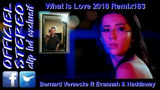 What Is Love 2018 Remix183 - Bernard Vereecke ft Evannah & Haddaway (Video clip HD)