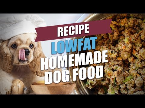 Lowfat Homemade Dog Food Recipe
