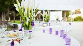Декор свадьбы в бело-фиолетовом цвете в Крыму