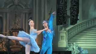 Les Etoiles de la Danse aux Folies Bergère