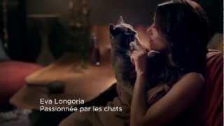 видео Ева Лонгория в рекламе Sheba