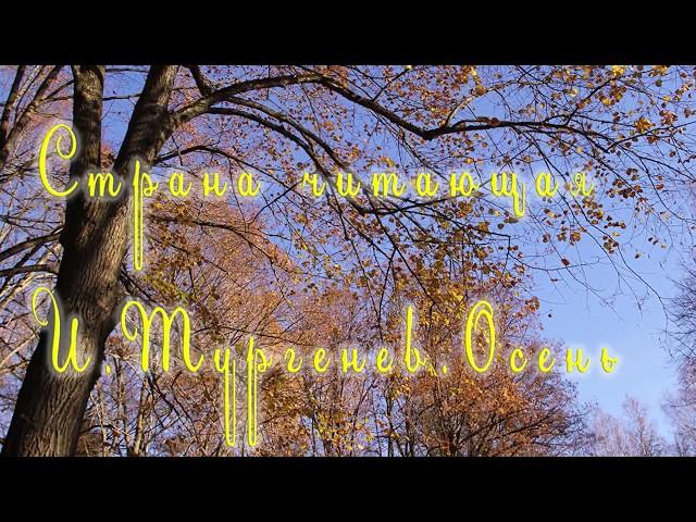 Изображение предпросмотра прочтения – ДарьяГребенева читает произведение «Осень.» И.С.Тургенева