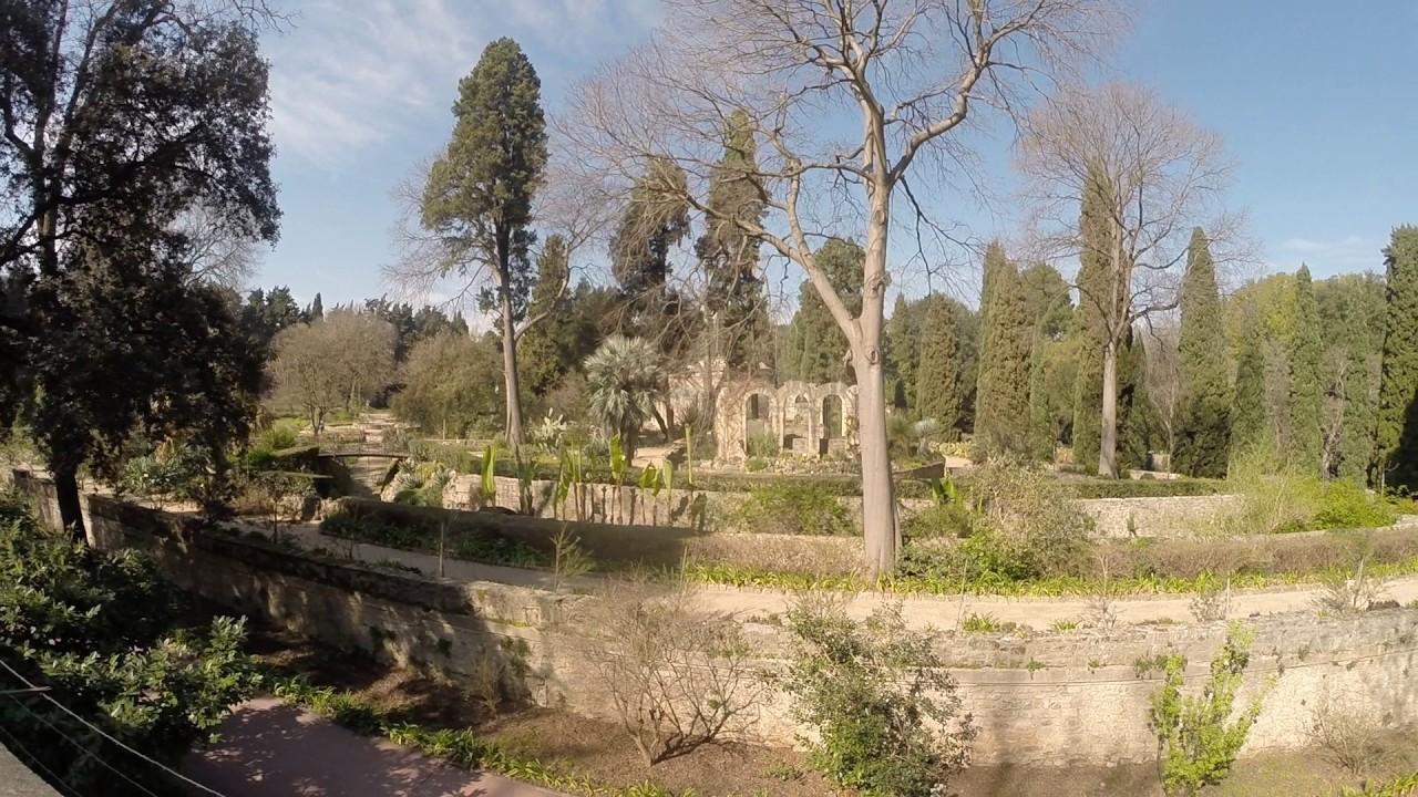 Le jardin des plantes montpellier youtube - Jardin des plantes de montpellier ...