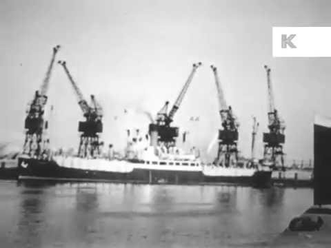 1930s Dublin Ireland, Docks, Livestock Export