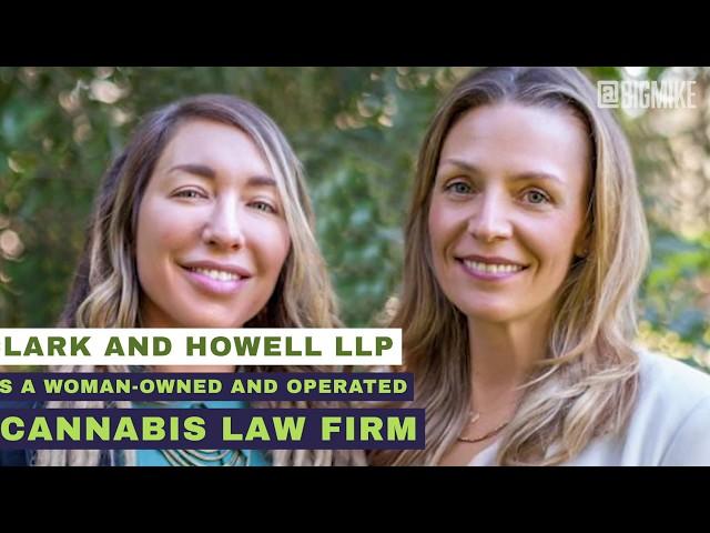 The Benefits of Cannabis Terpenes – Marijuana Morning News 2020