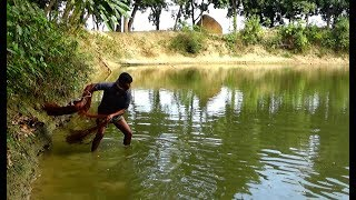 Net Fishing | Catching Fish With Cast Net | Net Fishing in the village (Part-140)
