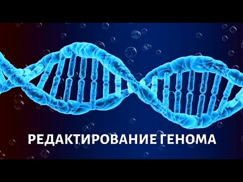 Вопросы выживания. Генное редактирование | Телеканал «Доктор»