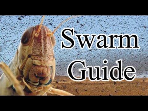 Pathfinder Swarm Guide