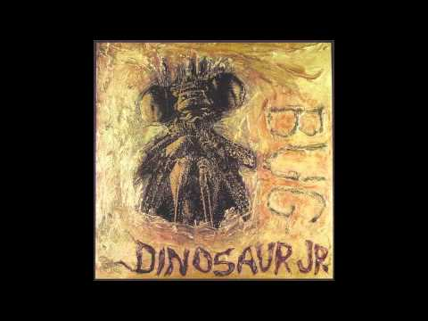 Dinosaur Jr. - Budge