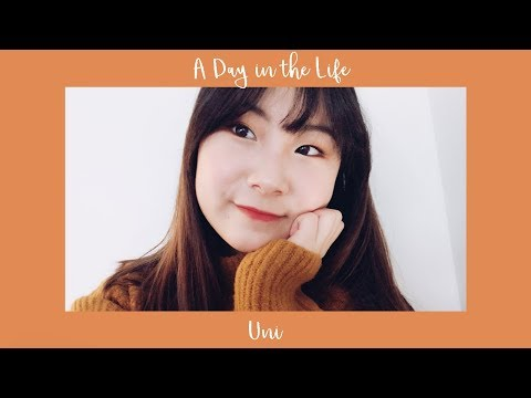 Day in the Life || Northeastern University