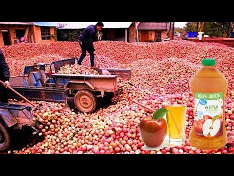 How is Apple Juice Produced, Modern Fruit Juice Production Process Saves Millions of Dollars