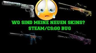 Meine neuen CS:GO Skins sind nicht in meinem Inventar Steam Inventar Verbugt