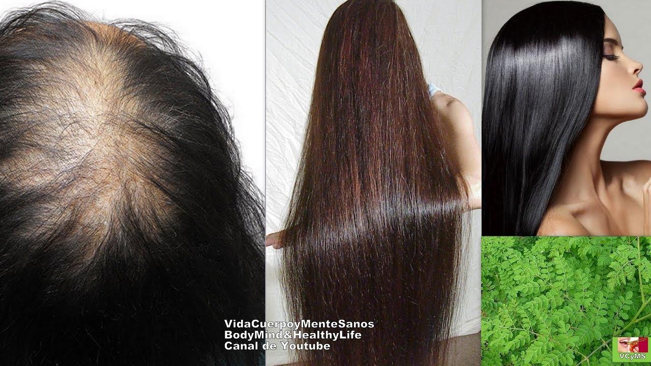 Detiene la caída de cabello, Evita la caspa y oscurece las canas, con esta planta | Remedio Casero