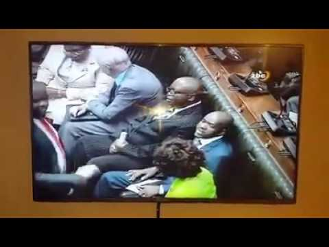 Chamisa causes EFF chaos in Zimbabwe parliament