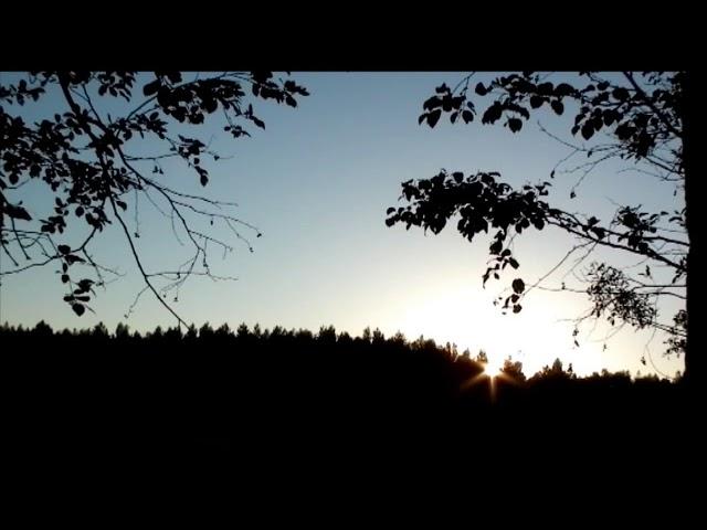 Изображение предпросмотра прочтения – ГалинаСкиба читает произведение «Весенний дождь» А.А.Фета