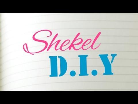 Shekel DIY EP01