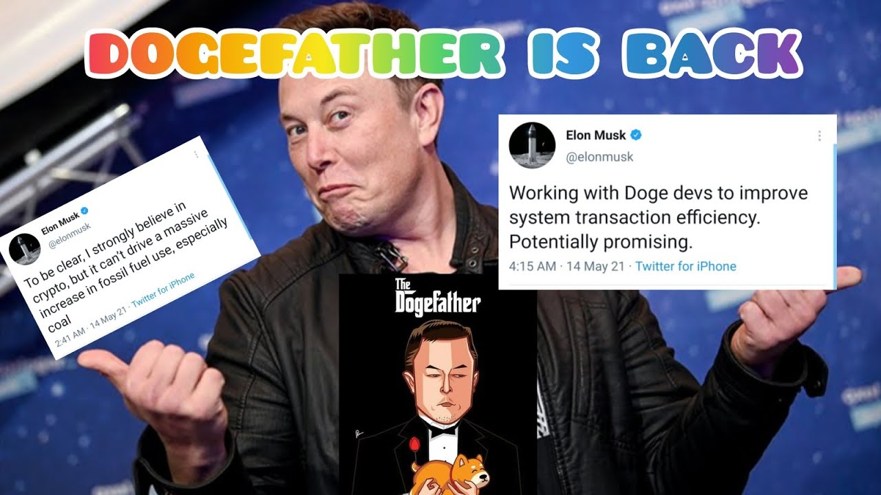 DOGEFATHER IS BACK 🔥 WITH PROMISING DOGE ❤️ TWEETS. ELON MUSK ...