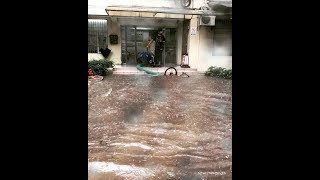 видео Погода Китай, Гуанчжоу