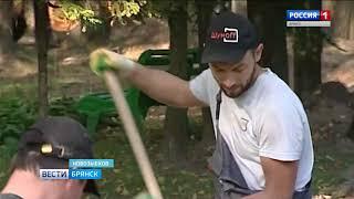 В Новозыбкове ведутся работы по благоустройству