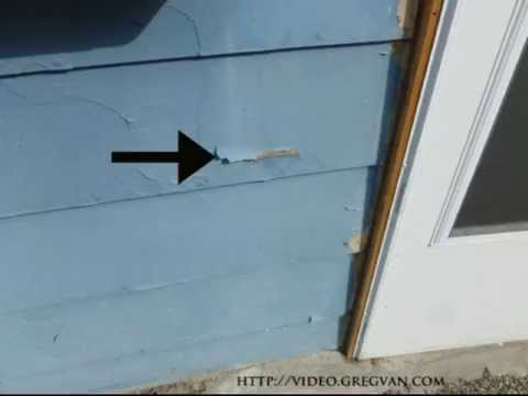 Paint Peeling On Smooth Hardboard Siding Construction