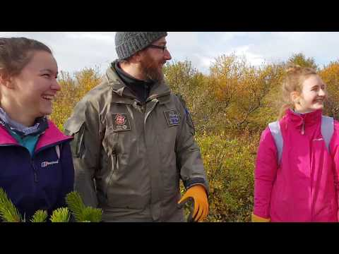 Thingvellir Nation Park Iceland - Ranger Interview