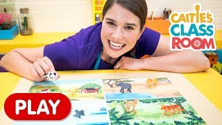 Where Do These Animals Live? | Caitie's Classroom