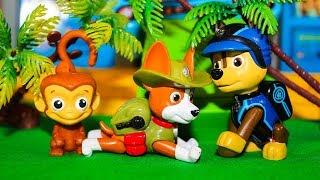 Мультики Щенячий патруль новые серии Гонщик спасает Трекера Мультфильмы для детей
