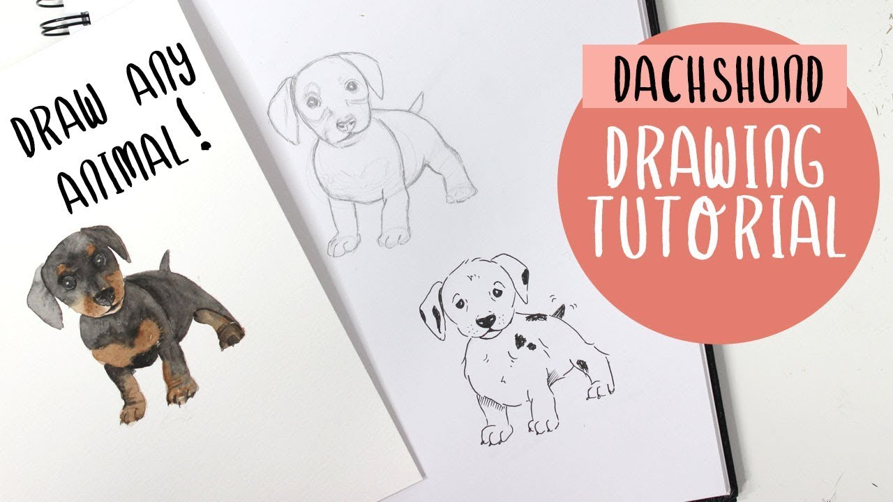How To Draw A Dog or ANY Animal For Beginners   Drawing Tutorial