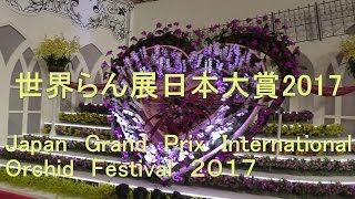 世界らん展日本大賞2017 Japan Grand Prix International Orchid Festival 2017