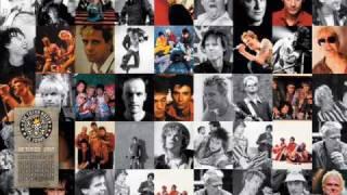 Die Toten Hosen - All die ganzen Jahre
