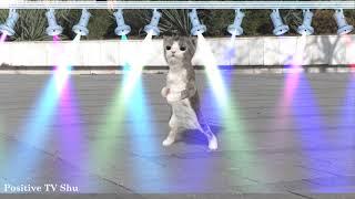 Best Budots Remix Compilation Dance Music 2020