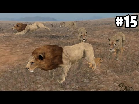 Wild Animals Online - Pack of Lions - Android/iOS - Gameplay